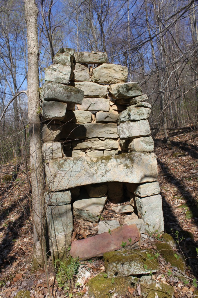 160 Year Old Chimney in Birch Hollow